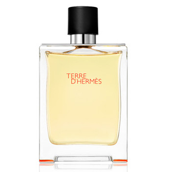 1af643ec327b Hermes Terre d`Hermes - Гермес парфюм мужской Туалетная вода, Объем  100мл -