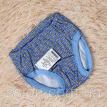 Майка и трусики комплект для мальчика голубого цвета в звезды (Украина) Татошка размер 116, фото 3