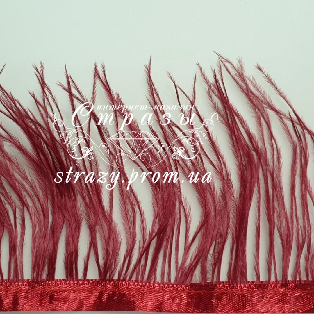 Страусиная перьевая тесьма 8-11см Red wine 1м