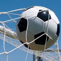 Сетка капроновая для футбольных ворот 7,32х2,44 м. / Футбольная сетка