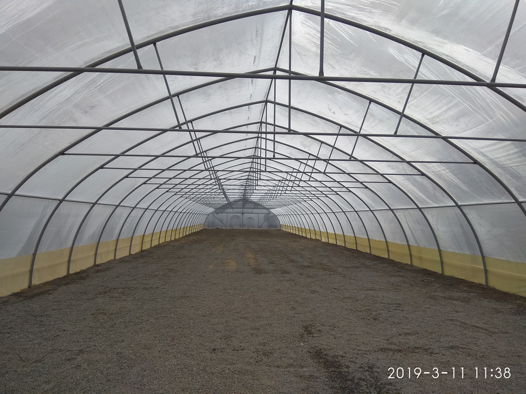 шпалеры в фермерской теплице