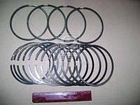 Поршневые кольца Д 245 245-1004060-А