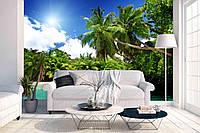 Фотообои Print Color Моря и острова Пальма