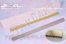Защита порогов - накладки на пороги Mercedes Vito/Viano W639 2004- (Standart)