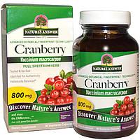 Nature's Answer, Клюква, 800 мг, 90 растительных капсул