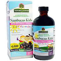 Nature's Answer, Формула з бузиною для дітей, 4000 мг, 8 рідин та си. унц. (240 мл)