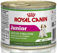Royal canin JUNIOR Роял Канин для щенков мелких пород, 195 г