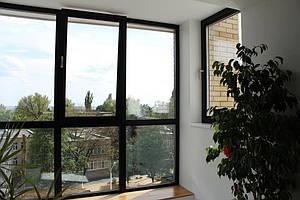 Алюминиевые окна в квартире 1