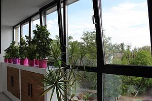 Алюминиевые окна в квартире 4