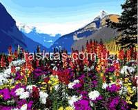 VP1088 Картина раскраска Альпийские луга DIY Babylon