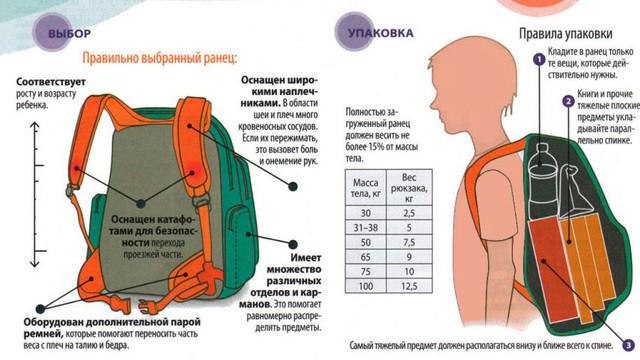 как выбрать ортопедический ранец