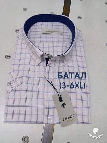Батальная рубашка короткий рукав Palmen костюмка, фото 2
