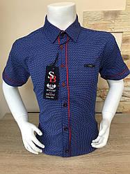 Детская рубашка с коротким рукавом, 5-8 лет с принтом
