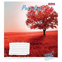 Зошит 12арк. лін. 1В Paradise Colours №763379(25)(500), фото 1
