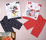 Детский костюм для девочки горошек Турция туника+шорты 1-2, 3-4, 4-5, 5-6 летлет