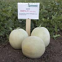Семена Дыня Мира F1, 100 семян Kitano Seeds
