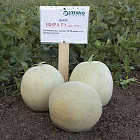 Семена Дыня Мира F1, 1000 семян Kitano Seeds