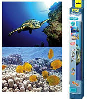 Фон для аквариума Tetra Turtle&Ree 60х45 см