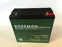 Аккумуляторы к электровелосипедам BOSSMAN 6DZM20