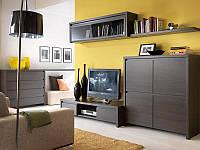 """Меблі у вітальню """"Каспіан"""" від БРВ (венге), фото 1"""