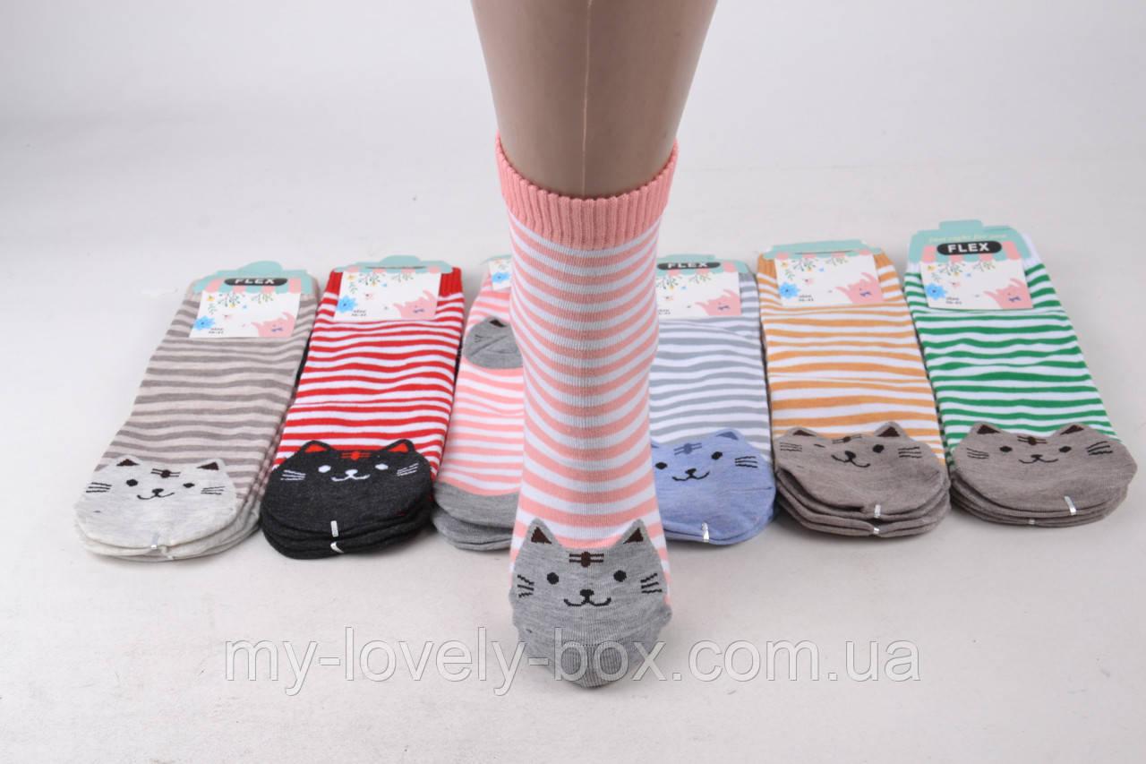 ОПТОМ.Женские носки Кошечки (SL9315)   12 пар