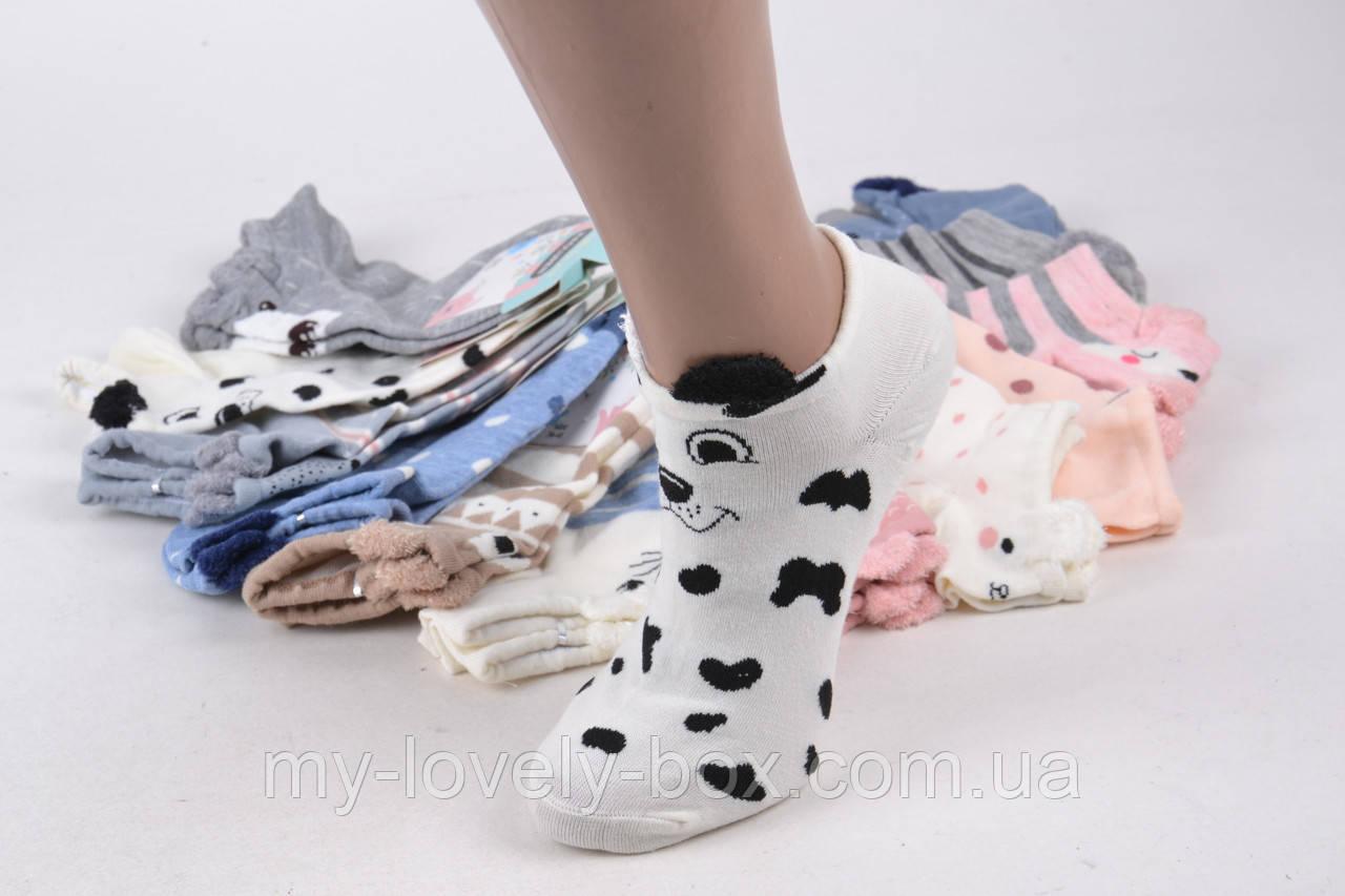 ОПТОМ.Женские носки Мордочки (SL006)   12 пар