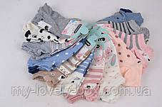 ОПТОМ.Женские носки Мордочки (SL006)   12 пар, фото 3