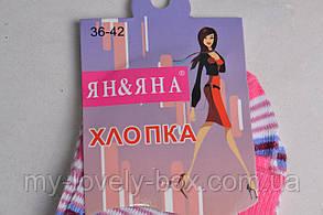 ОПТОМ.Женские носки в полоску ХЛОПОК (Арт. YB2) | 12 пар, фото 2
