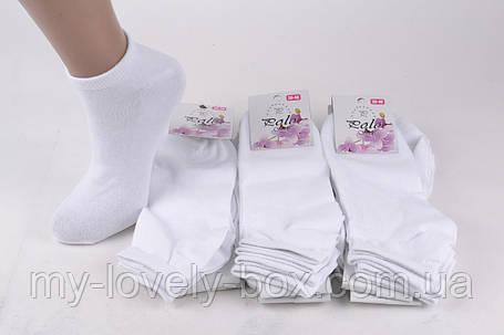 ОПТОМ.Женские заниженные носки Cotton (Арт. Y502) | 12 пар, фото 2