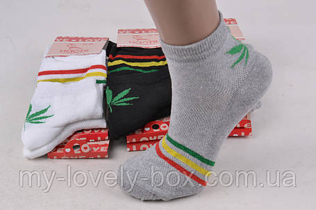 ОПТОМ.Женские носки с рисунком ХЛОПОК (PT236S) | 12 пар, фото 2