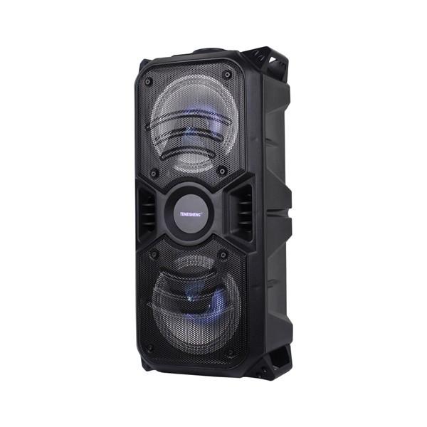 Активная переносная колонка с радиомикрофоном Temeisheng TMS-601