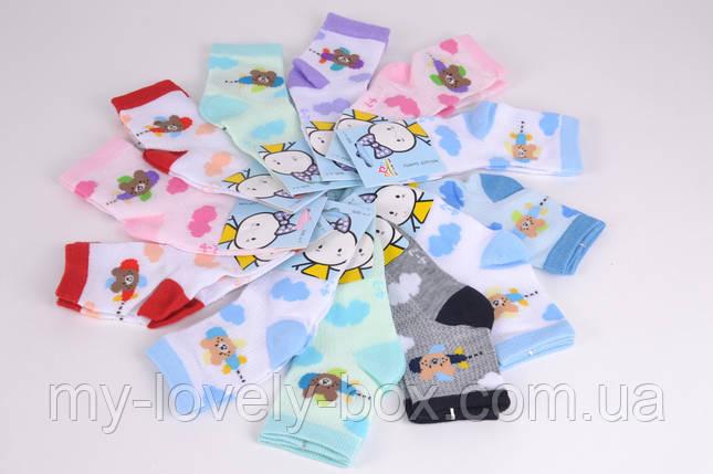 ОПТОМ.Детские носки сеточка Мишки р.0-3 года (B2675/0-3)   12 пар, фото 2