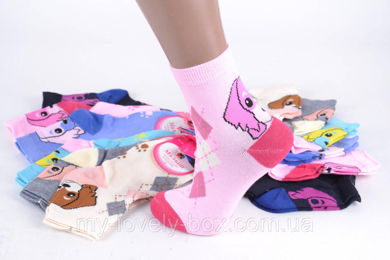 ОПТОМ.Детские носки на девочку с узором (TKC218/34-37) | 12 пар