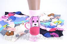 ОПТОМ.Детские носки на девочку с узором (TKC218/34-37) | 12 пар, фото 2