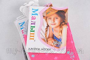 ОПТОМ.Носки детские на девочку (TKC251/25-28) | 12 пар, фото 2