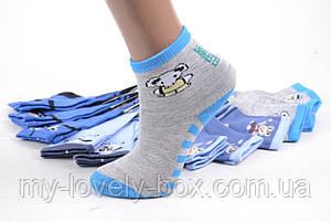 ОПТОМ.Детские носки на мальчика р.17-21 (LC235/XS)   12 пар, фото 2