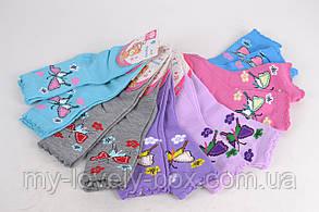 ОПТОМ.Детские носки на девочку  ( WC230/XL ) | 12 пар, фото 3