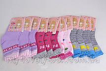 ОПТОМ.Детские носки с рисунком (Арт. WC253/S) | 12 пар, фото 3