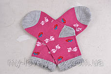 ОПТОМ.Детские носки с рисунком (Арт. WC253/XS) | 12 пар, фото 2