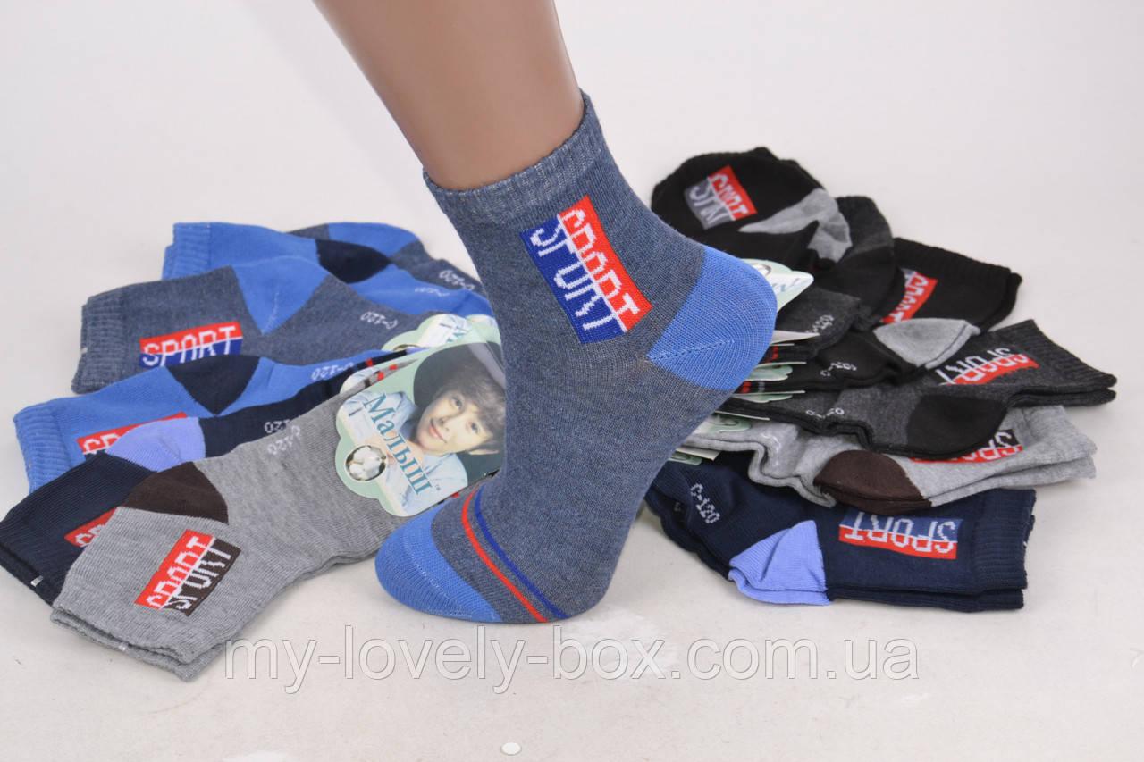 "ОПТОМ.Детские носки на мальчика ""SPORT"" (Арт. TKC120/35-40) | 12 пар"