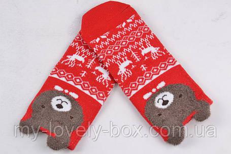 ОПТОМ.Детские Хлопковые носочки Мордочки (D351/25-30) | 10 пар, фото 2