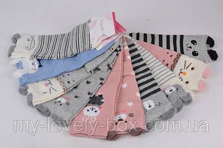 ОПТОМ.Детские Хлопковые носочки Мордочки (D351/35-39) | 10 пар, фото 2