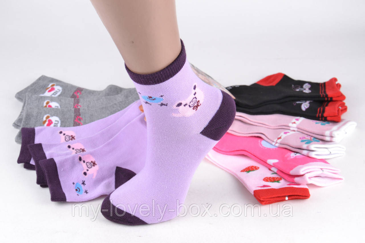ОПТОМ.Детские Хлопковые носки на девочку (Aрт. 5013/20-25) | 12 пар