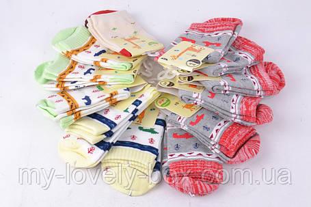 ОПТОМ.Носки детские Хлопковые с рисунком (Арт. PTC170/6-8) | 12 пар, фото 2