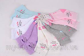 ОПТОМ.Детские Хлопковые носки на девочку (FE5852-2/7-8) | 12 пар, фото 3