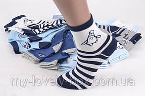 "ОПТОМ.Детские носки на мальчика ""Фенна"" ХЛОПОК (FEC5010/20-25) | 12 пар, фото 2"