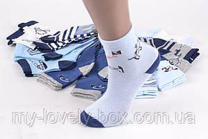 "ОПТОМ.Детские носки на мальчика ""Фенна"" ХЛОПОК (FEC5010/25-30) | 12 пар, фото 2"