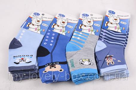"ОПТОМ.Детские носки на мальчика ""ХЛОПОК"" (C235/XS) | 12 пар, фото 2"