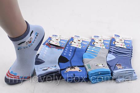 "ОПТОМ.Детские носки на мальчика ""ХЛОПОК"" (C235/S) | 12 пар, фото 2"