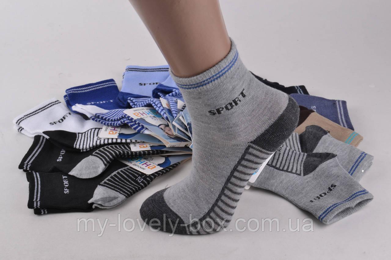 ОПТОМ.Детские Хлопковые носки на мальчика (FE5012-2/25-30) | 12 пар